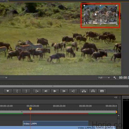 How to do PiP frame animation with customized coordinates in Adobe premiere Pro CS6