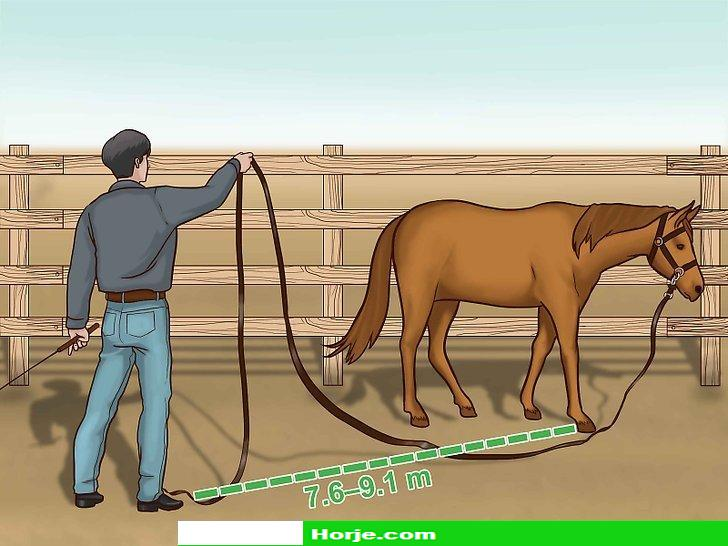 How to Train a Horse to Drive