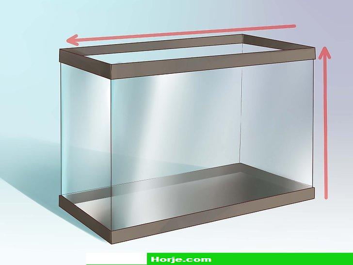 How to Create an Undergravel Filter for Your Fishtank