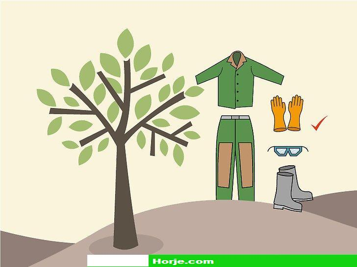 How to Top a Tree