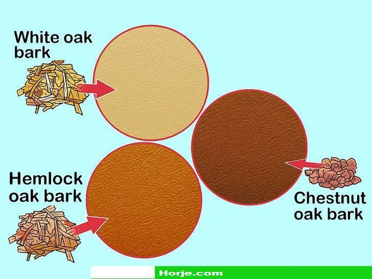 How to Bark Tan