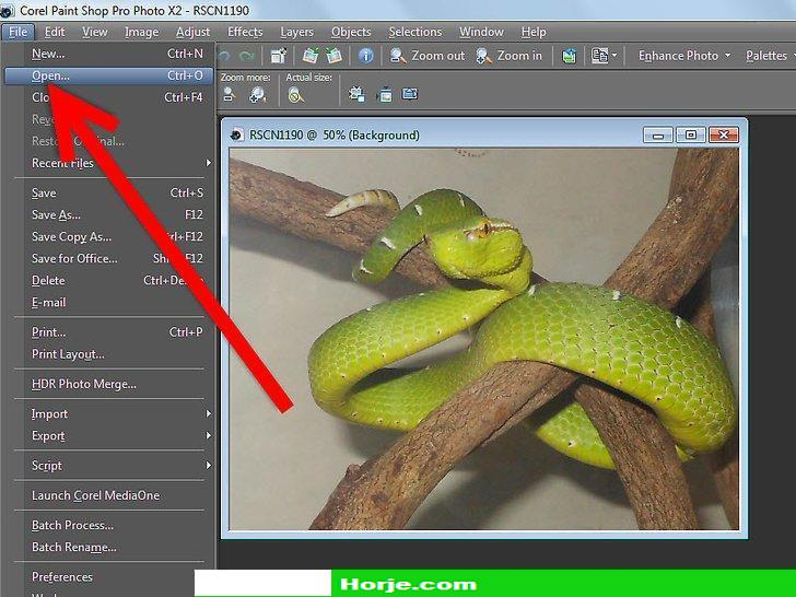 How to Remove a Background Using Paint Shop Pro X3